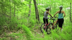 273904930-underbrush-mountain-bike-mountain-biking-fern